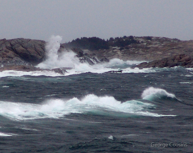 Wild Coast by George Cousins