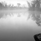 Misty Lake by Bill Spengler