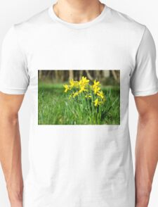 English Native Daffodils Unisex T-Shirt