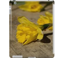 Spring in waiting iPad Case/Skin