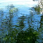 Reflections by Sarah Niebank