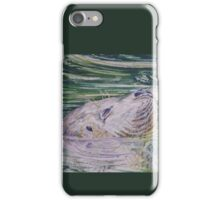 Contented seal iPhone Case/Skin