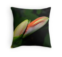 Amaryllis Buds Throw Pillow