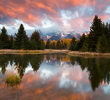 Teton Morning at Schwabachers Landing by Albert Dickson