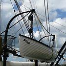 HMS Warrior Cutter by Woodie