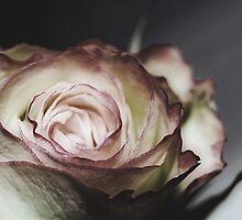 always beautiful by Angel Warda