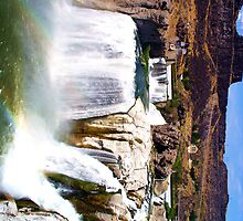 Shoshone Falls by Michelle Bell