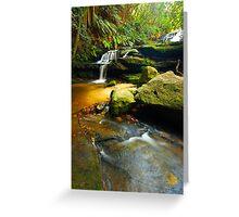 Leura Cascades - Blue Mountains  Greeting Card