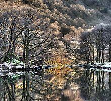 Magical River Derwent by David Robinson