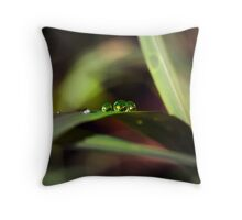 The essence of life Throw Pillow