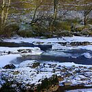 River Swale at Keld,North Yorkshire. by Trevor Kersley