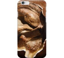Dinosaur egg with embryo iPhone Case/Skin