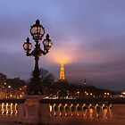 Paris lights by Elena Skvortsova