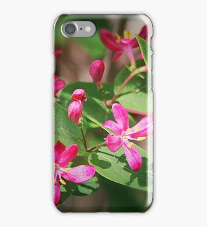 Wild Honeysuckle iPhone Case/Skin