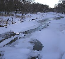 La Salle River in the Winter by Stephen Thomas