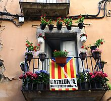 Catalan flag on the balcony  by mrivserg
