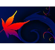 A Leaf out of colorful life Photographic Print