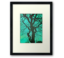 Trees - 30 Framed Print