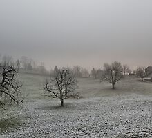 farm on a gray winter day by peterwey
