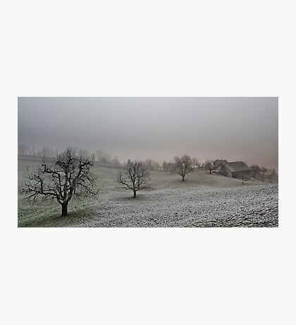 farm on a gray winter day Photographic Print