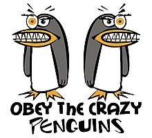 Obey The Crazy Penguins  Photographic Print