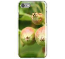 Unripe apples iPhone Case/Skin