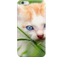 Adorable kitty in grass iPhone Case/Skin