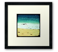 Summer beach photography print, green ocean waves golden sand soaring flying bird, Los Cabos Mexico travel photography, wall art home decor Framed Print