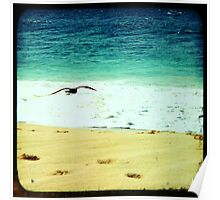 BEACH BLISS - Soaring Poster