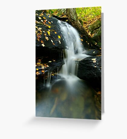 A Small Falls in Autumn Greeting Card