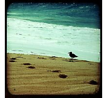 BEACH BLISS - Contemplate Photographic Print