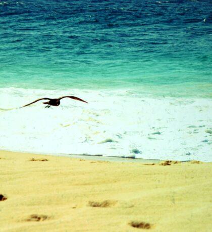 BEACH BLISS - Soaring Sticker