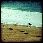 BEACH BLISS - Contemplate by moderatefanatic