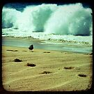 BEACH BLISS - Calmness in the Storm by Vanessa Sam