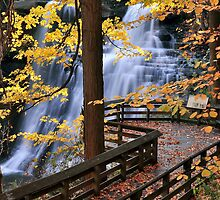 The Brandywine Falls by SSaA