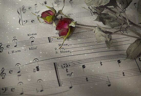 Ramblin' Rose . . . by Rosalie Dale