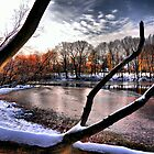 North Park Lake by SSaA