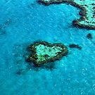 Heart Reef by Renee Hubbard Fine Art Photography