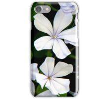 Pale Purple iPhone Case/Skin