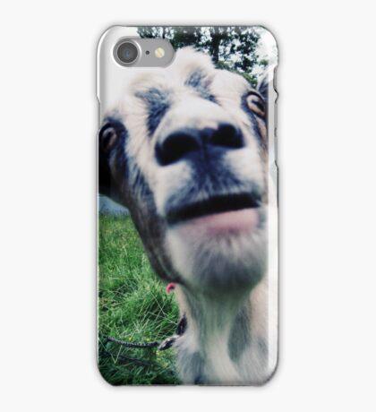 bah! iPhone Case/Skin