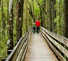 Walking the Preserve by Rosalie Scanlon