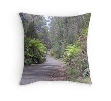 Main North Road Throw Pillow