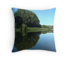 Ruamahanga River Wairarapa New Zealand Throw Pillow