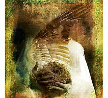 The Bird Madonna Photographic Print