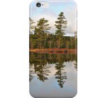 Autumn Reflector iPhone Case/Skin