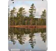Autumn Reflector iPad Case/Skin