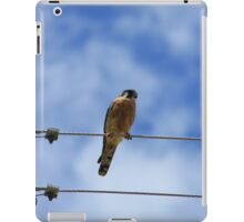 American Kestrel on a Wire iPad Case/Skin