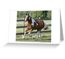 Sharp Shootin Peppy Greeting Card