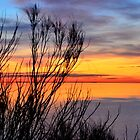 Sunset Colours by Doug Miller