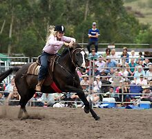 Picton Rodeo BR2 by Sharon Robertson